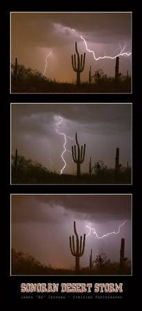 Southwest Desert Thunderstorm Progression