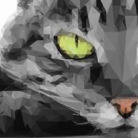 cat Art Prints & Posters by Varun Tandon