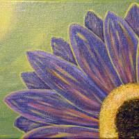 """""""Purple Gerbera Daisy Flower"""" by thedustyeasel"""