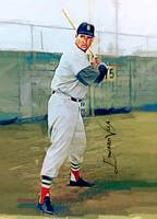 Ted Williams #14 Wall Art