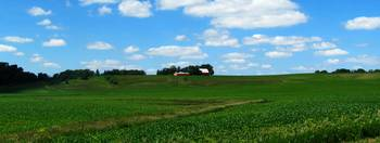 Red Barns in the Green Rolling Hills