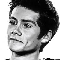 Dylan Art Prints & Posters by Sarah Taylor