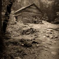 Rustic Cabin Art Prints & Posters by Larry Bohlin