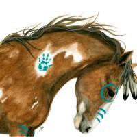 """Indy Pinto Horse"" by AmyLynBihrle"