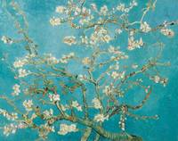 Vincent van Gogh's Branches of an Almond Tree in B
