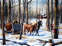 In The Sugar Bush