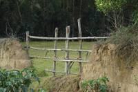 Wood Rail Fence and a Pasture