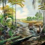 Florida Cattlemen- Preservers of the Past