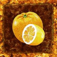 Kitchen Decor Orange And Lemon by Irina Sztukowski