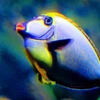 Fish Lips by Karen Adams
