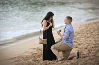 Surprise Engagement Surprise Proposal