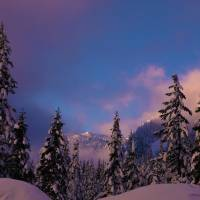 Alpental Snoqualmie Pass, WA Art Prints & Posters by Dennis Golden