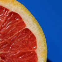 Ruby Red Grapefruit Macro by Karen Adams
