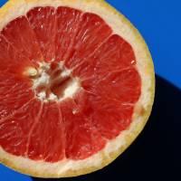 Ruby Red Grapefruit  by Karen Adams