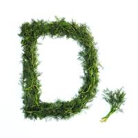 Kitchen Alphabet. Letter D.