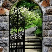 Through the Garden Gate  by Karen Adams