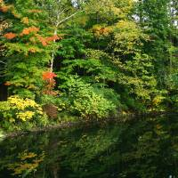 October Reflections by Karen Adams