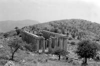 Temple of Apollo Epicurius, Bassae by Priscilla Turner