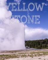 Yellowstone National Park's Old Faithful Geyser
