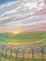VINEYARD SUNRISE ~ For display only