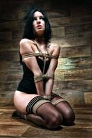 Tied in Lingerie - Fine Art of Bondage