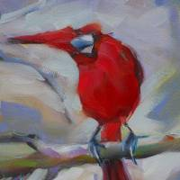 Curious Cardinal by Beth Charles