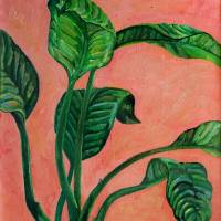 Dancing Dieffenbachia Leaves by Karen Adams