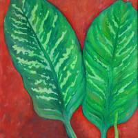 Two Dieffenbachia Leaves by Karen Adams