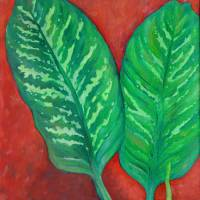 Two Dieffenbachia Leaves by Karen Adams