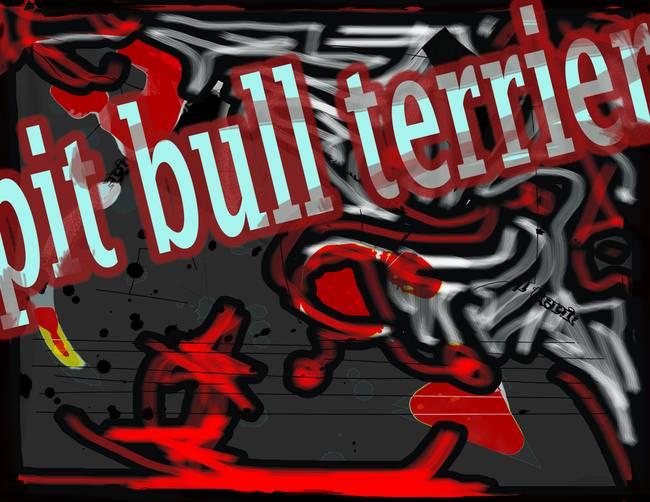 pit bull terier