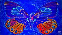 Abstract Butterfly Art 13