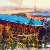 Docked by Lisa Rich