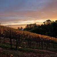 fall morning colors by Richard Thomas