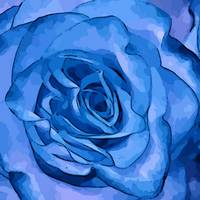 Blue Rose Edges