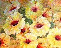 hibiscus yellow 3