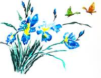 Watercolor painting of irises