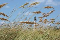 Lighthouse through Sea Oats by Carol Groenen