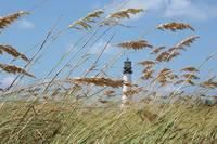 Lighthouse through Sea Oats by Carol Groenen