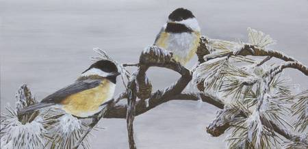 Ice Storm Chickadees