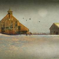 old cherry creek barn and horse by r christopher vest