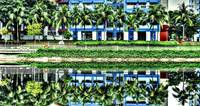 Under The Coconut Tree, Pasir Ris Town Singapore