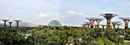 Panorama Garden by the Bay Singapore