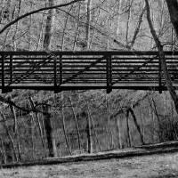 Bridge Reflections Black and White by Karen Adams