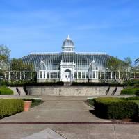 John F Wolfe Palm House at Franklin Park by Karen Adams