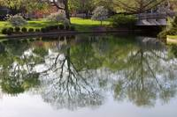 Franklin Park Reflections