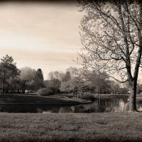 Hammock in Franklin Park - Sepia by Karen Adams