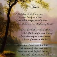 """Trees by Joyce Kilmer"" by PagesOfAges"