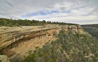 Ravens fly near Cliff Palace, Mesa Verde NP