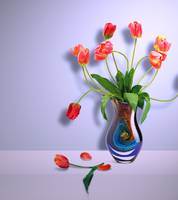 Beautiful Vase of Flowers-7