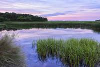 Reflective South Carolina Lowcountry Marsh Scene a